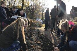 Leerlingen in Wieringerwerf planten bollen om Kristallnacht te herdenken