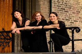 The Hague String Trio in Hippolytuskerk