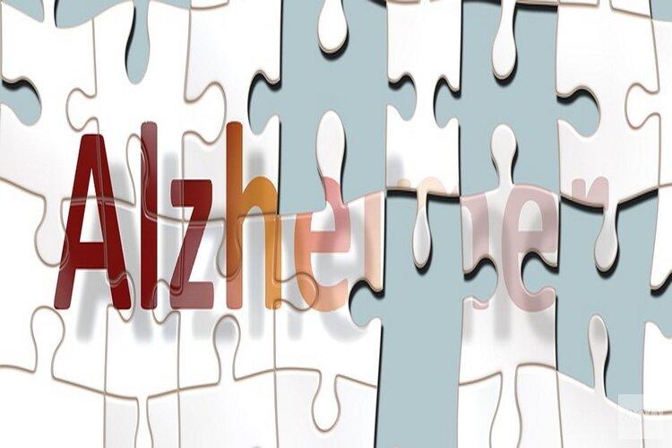 Wereld Alzheimer Dag in de Noordkop: Voorstelling DE VERRASSING & Certificering dementievriendelijke gemeente Hollands Kroon