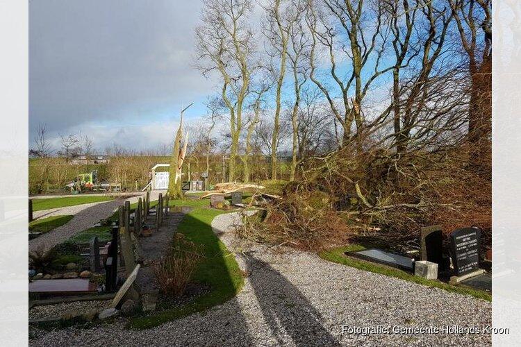 Door storm boom op graven gewaaid begraafplaats Stroe