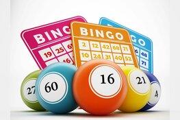 Gezellige bingo in Dorpshuis Hippolytushoef