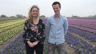 Bloembakkenservice: overtollige bloembollen krijgen alsnog kans om te bloeien