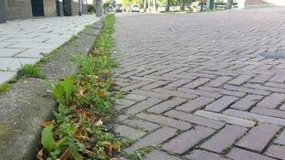 Extra strenge controles op kwaliteit openbare ruimte