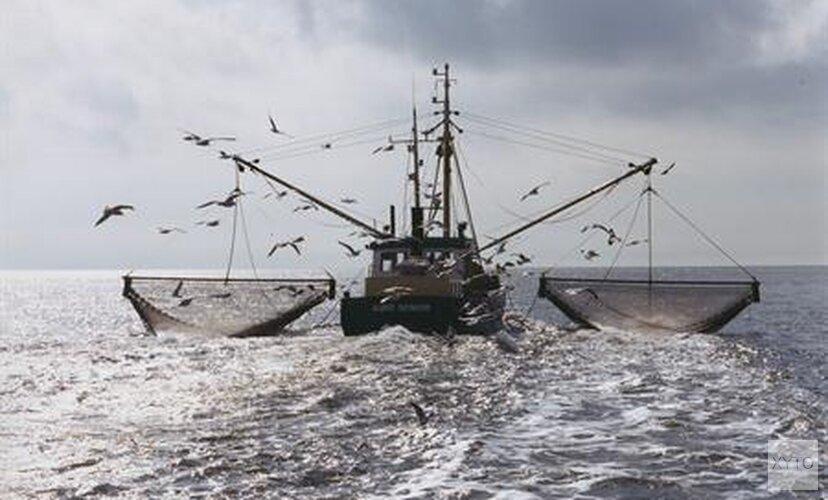 Afspraken over minder visvangst in IJsselmeer